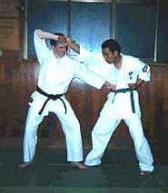 Photograph 1. The application of the posture. The right hand pulls the opponent's right hand to break his balance as the left hand strikes into the lower body. Possible kyusho targets are denko (GB-24) or inazuma (Liv-13). The idea here is to inflict damage on the opponent before throwing.