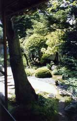 A view of Hearn's beloved garden.